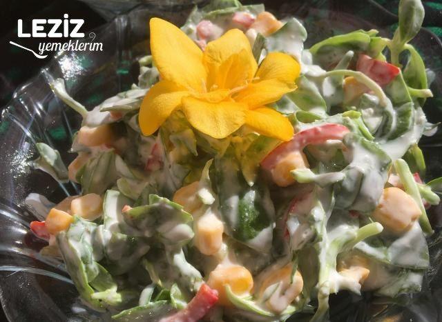 Bol Malzemeli Semizotu Salatası