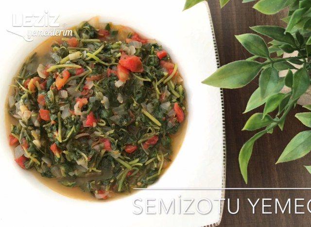 Semizotu Yemeği