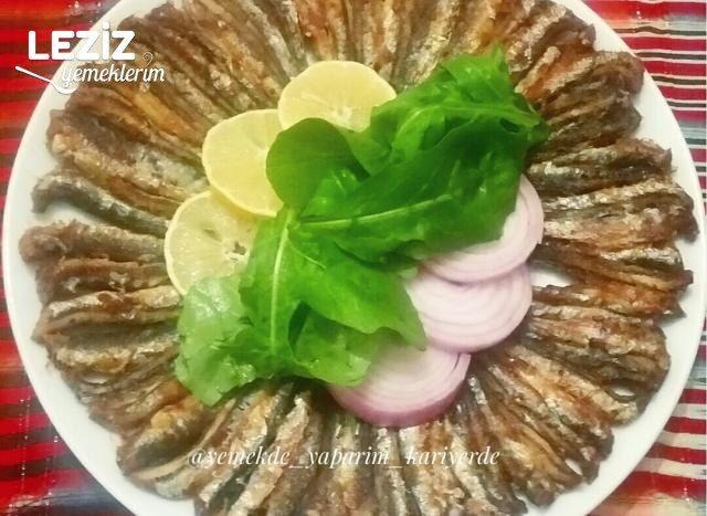 Tavada Hamsi Balığı