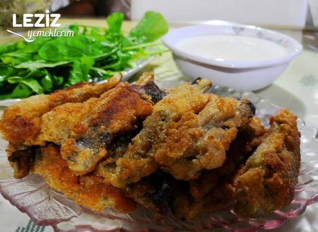 Patlıcan Balığı (Sanki Balık)