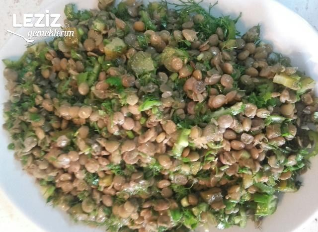 Yeşil Mercimek Salatası (Vitamin Deposu)