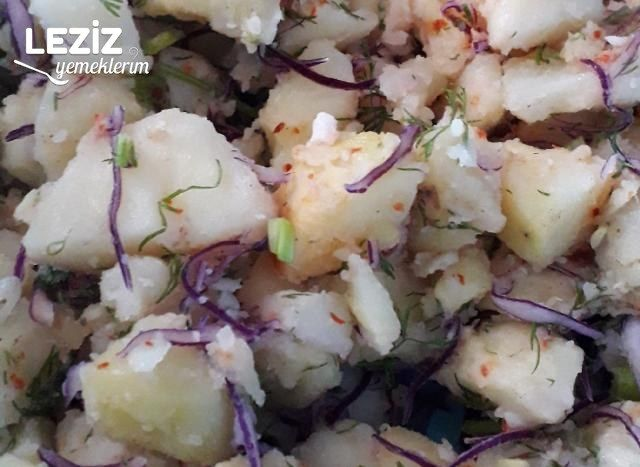 Mor Lahanalı Patates Salatası