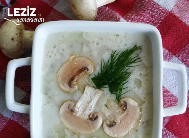 Sütlü Mantar Çorbası Yapımı