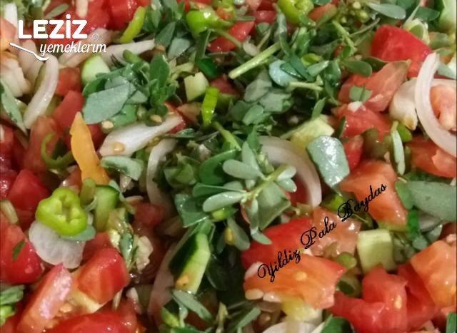 Pirpirim (Semiz Otu) Salatası